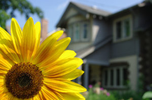 Buy a home in Orange County